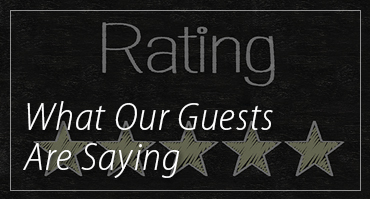 What Our Guests Are Saying!
